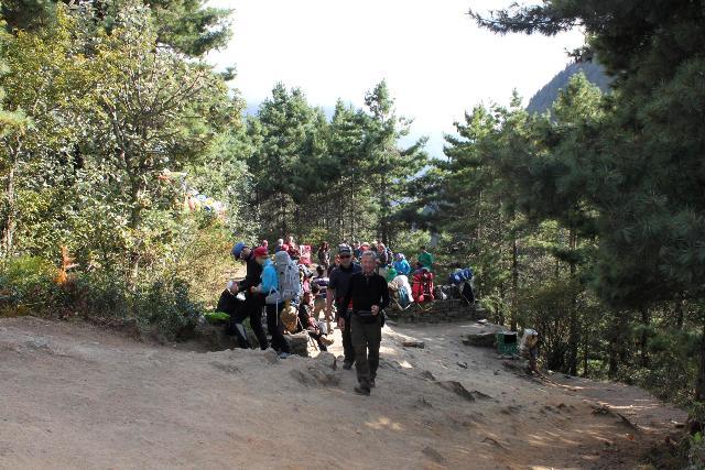 Vår vandring tar oss genom gröna terassodlingar, vidare till barrskog och slutligen till högalpin miljö.