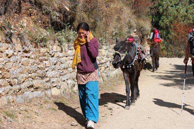 Sherpaflicka och hennes häst.