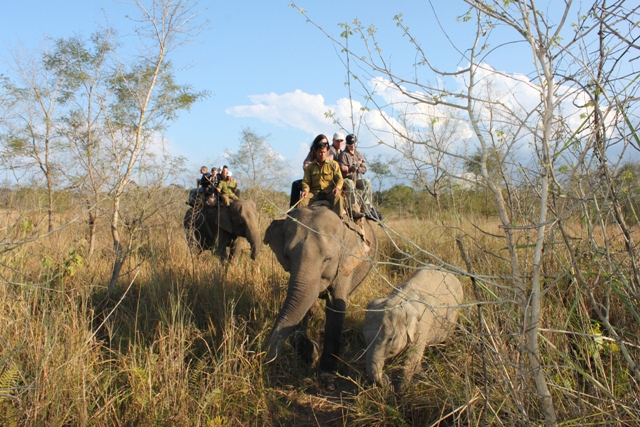Chitwan Elefantsafari