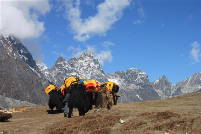 Yakar pa vag till Everest BC